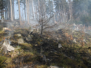 Požár u Olešnice