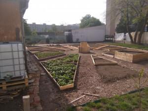 Tréninková zahrada v centru Hradce pomáhá lidem zahradní terapií