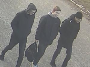 Policie hledá tyhle tři mladíky.